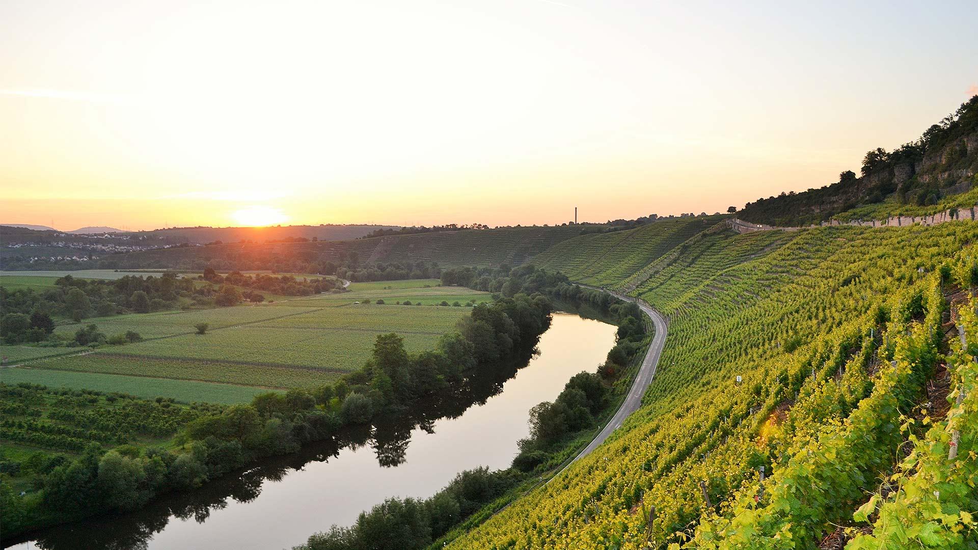 Home-weinblick-besigheim-Neckar-Sunset-Sonnenuntergang