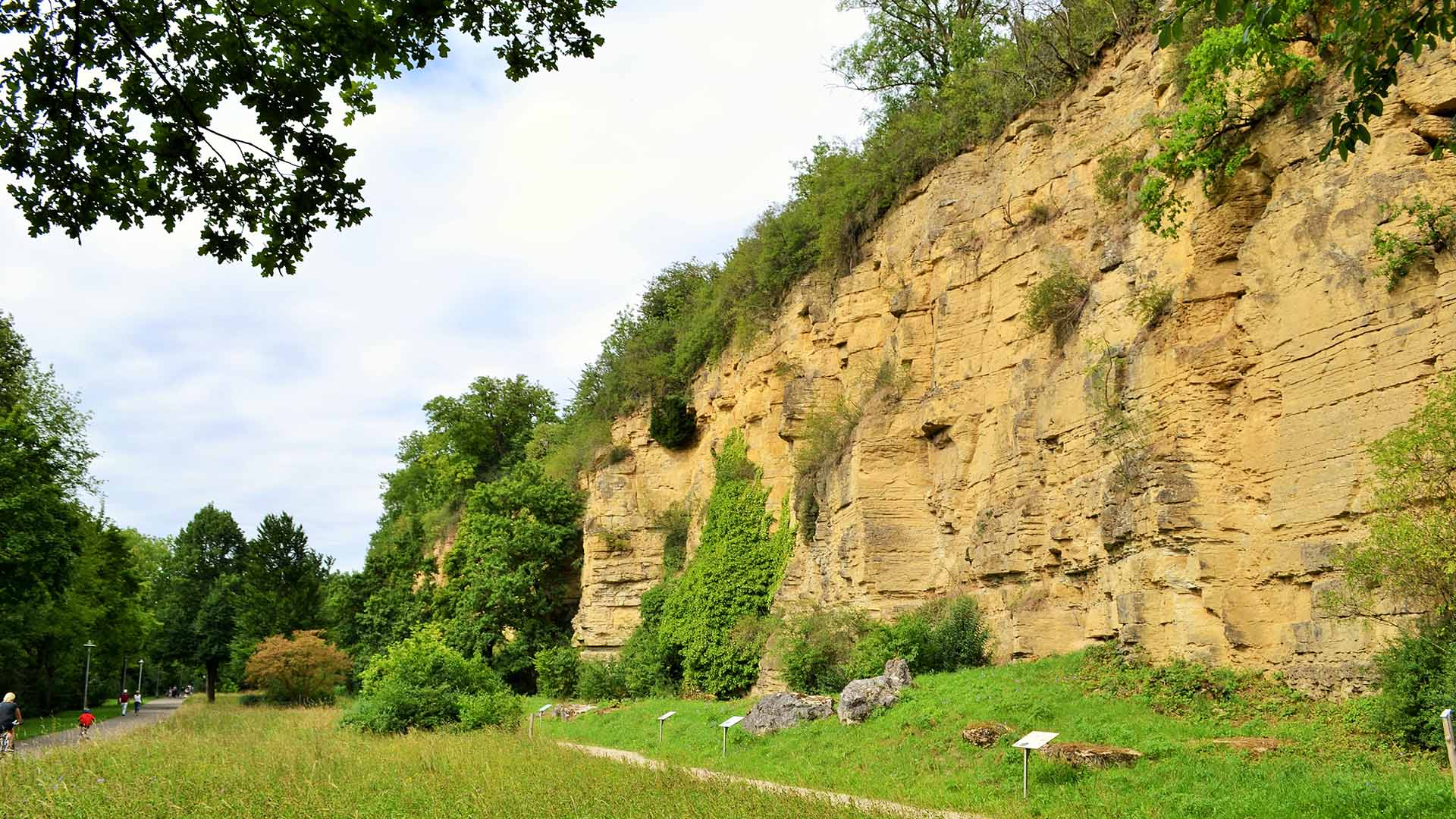 weinblick-besigheim-felsen-klettern